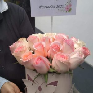 Box de 24 Rosas Rosadas