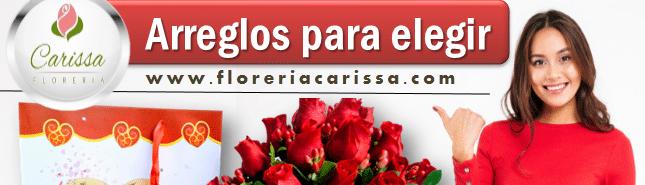 Floreria Carissa
