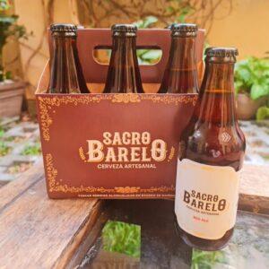 Six pack Cerveza artesanal