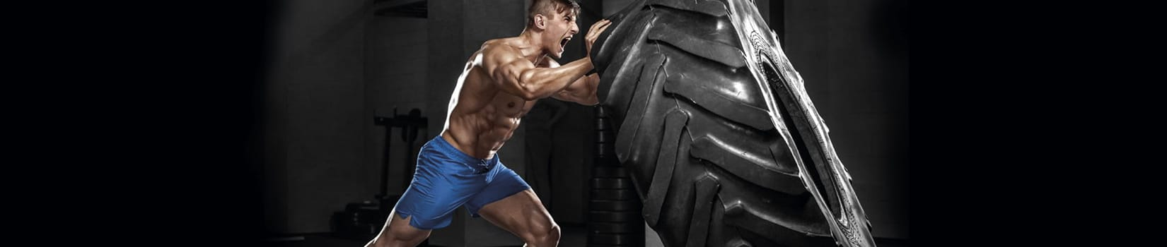 Muscle Mass Fit